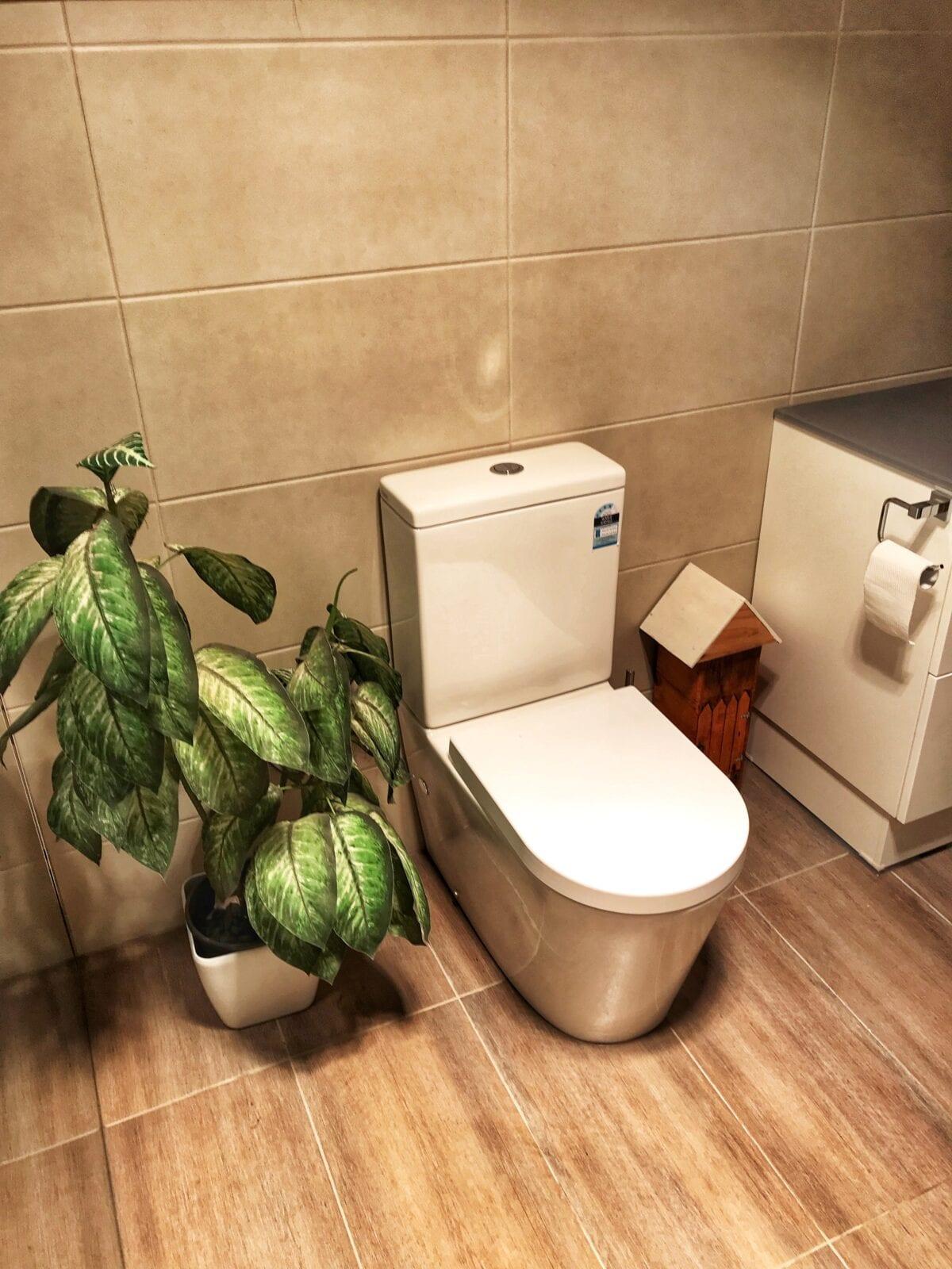 jlt plumbing expert bathroom renovations